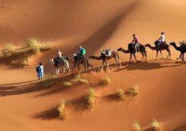 Тунис из окна автомобиля: главные достопримечательности