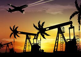 Туроператор: нас приняли за нефтяников!