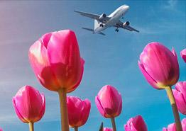 Туристам подарили длинные майские праздники. Ждать ли бума спроса?