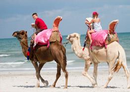 Отдых на острове Джерба: куда поехать с ребенком?