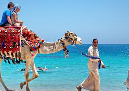 Отдых в Египте будет с присмотром