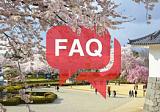 Что нужно знать, если летишь в Японию впервые?
